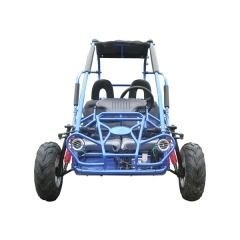 MIDT TrailMaster Dune Buggy Road