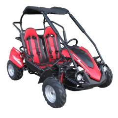 Racing Road Buggy For barn