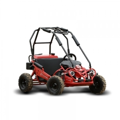 Kids Buggy Manufacturer